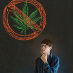 Should America Be Going Green: The Pros & Cons of the Legalization of Marijuana